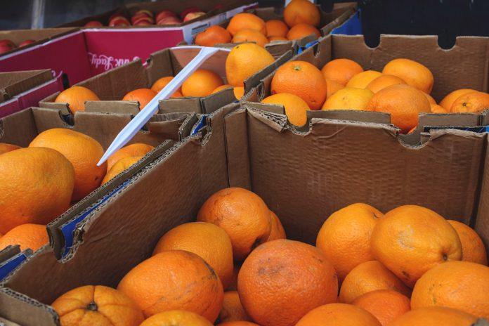 Significativo aumento de la producción mundial de naranjas en 2020/2021
