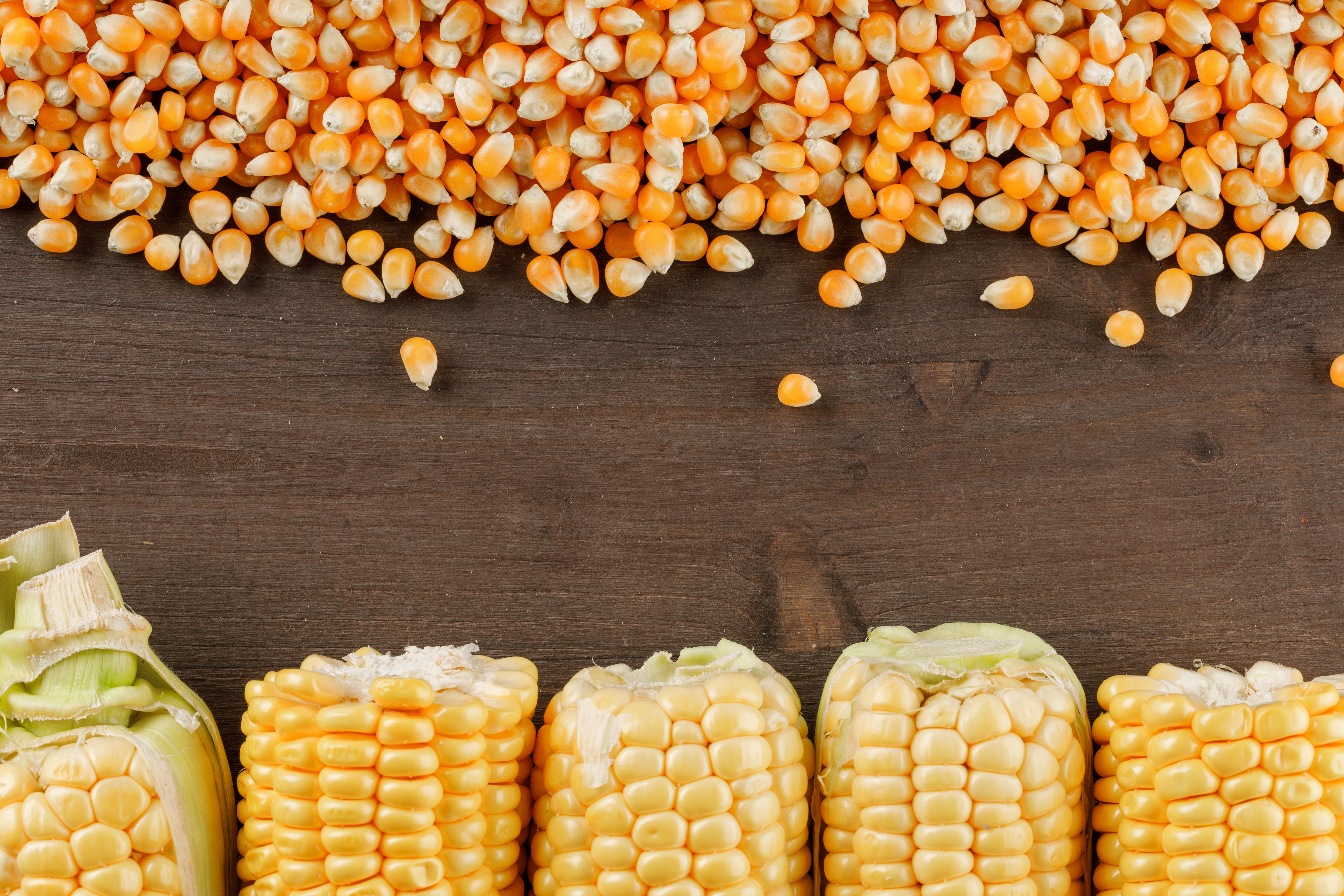 Nueva subida repentina del valor del índice de precios de los alimentos de la FAO en enero